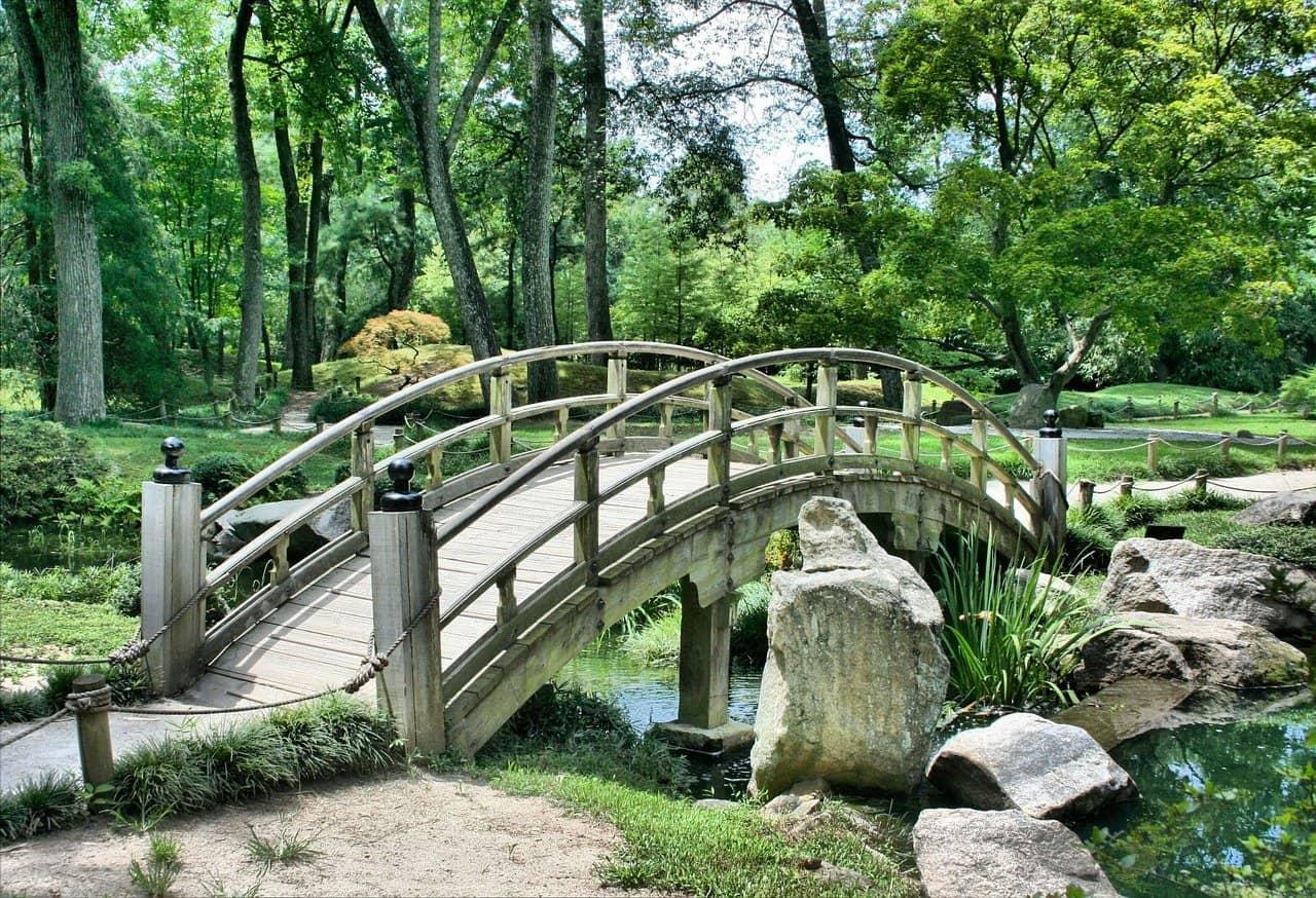 ogrod-japonski, kwitnacej-wisni, krajobraz